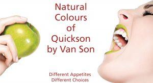 Quickson Plus MMC